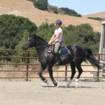 Cantering Can Be Child's Play