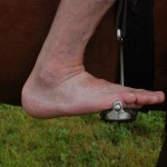 No. 90 Balance Point of the Foot