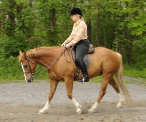 Photo 3. While staying in the middle with my back full and legs underneath me I think of a bungee cord pulling my waist backward. My horse is able to raise his back, drop his head and step back easily because I am not restricting him.