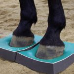 FREE SURE FOOT Webinar June 19 (Plus, Enter to Win a Full Set of Sure Foot Pads!)