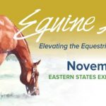 Wendy is Heading to Equine Affaire in November